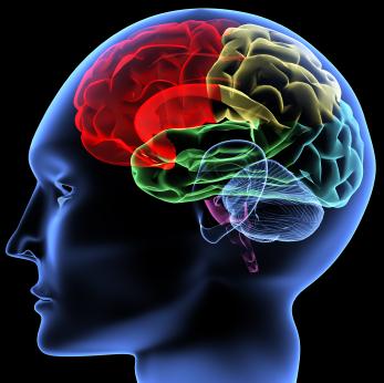 Brainwave Entrainment 6 Cara Menambah Daya Ingat
